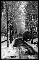 Snow_3 by Marcello-Paoli