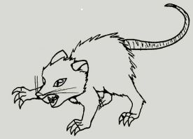 Rat by wolfb09