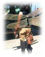 Gold Vinyl Dragonfly Steampunk wings by FairyberryBlossoms