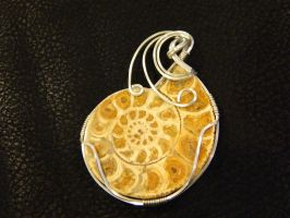Ammonite in sterling silver by DPBJewelry