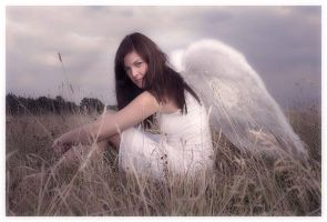 Angel by PvP