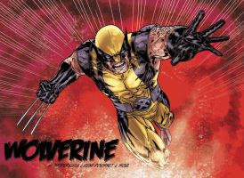 Wolverine color attack by SpiderGuile