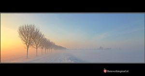 Winter Wonderland XV by Betuwefotograaf