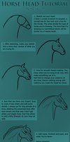 Horse Head Tutorial by inaeriksson