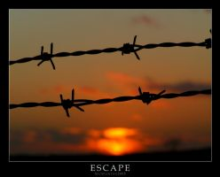 Escape by Whippeh