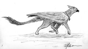 Ash the Gryphon by Feanor-the-Dragon
