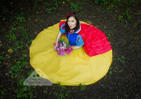 Snow white lost in the woods fairytale by chamellephoto