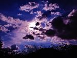 PuRpLe cLoUdS by AthenaIce