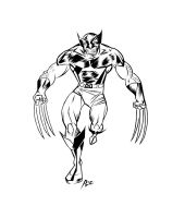 Classic Wolverine by rubioric