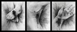 Wounds Triptych by Rkor4