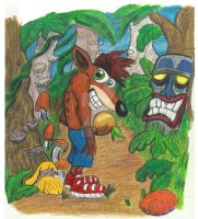 Bring Back Crash Bandicoot by CrystalMarineGallery