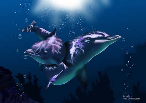 Dolphins by HelenLight
