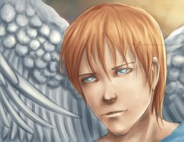 Maximum Ride - Iggy by Zinantis