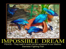 Impossible Dream by MichelLalonde