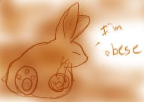 The rabbit of obesity by Yoccuri