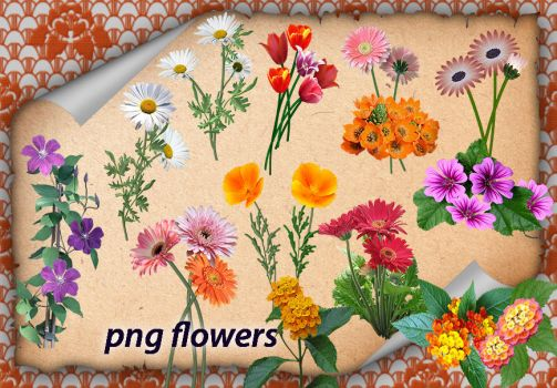 Png Flowers by roula33