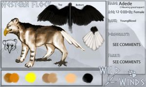 Adede reference sheet for Wild-winds by milinkre