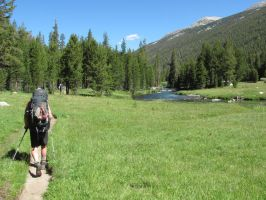 The John Muir Trail by NMWoodcarver