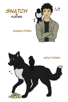 Snatch and Fledge Ref by CloudyKasumi