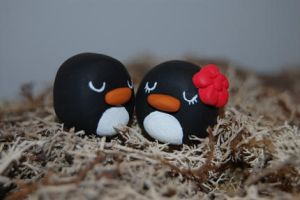 Penguins love by knil-maloon