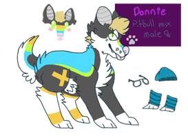 donnie reference sheet by huskynugget
