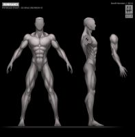 SPARTAN-II Male Physique Study by Tekka-Croe