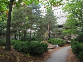 University - Green Space by The-Camo