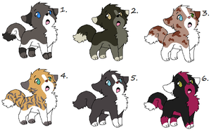 Puppy Adoptables Batch 3 -CLOSED- by WolfTwine