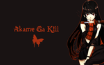 Akame Ga Kill Wallpaper by Ownsin