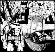 arkham city by ashasylum