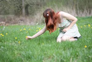 Spring Stock 02 by Malleni-Stock