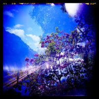 Holga Blues 08 by lomolurgee