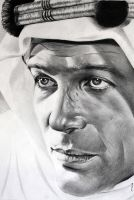 Peter O'Toole by donchild