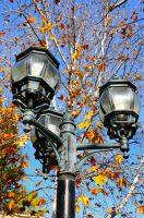 lamp in the Autumn by tomkenar