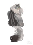 Norwegian Forest Cat by norapotwora