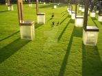 Ducks at The OKC Memorial by yc00212