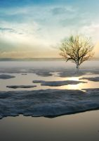 winter wasteland by indecent-lighting