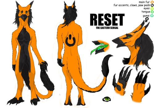Reset the eastern sergal reference sheet by WerewolfPoland