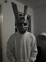Frank the Bunny Mask by ChasingEchoes