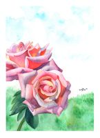 Watercolour Roses by BrendanPark