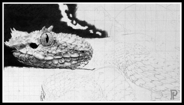 Eyelash Pit Viper ( WIP ) by enigmatic-freak
