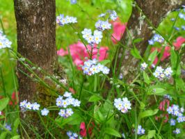Blue and Pink Decay by The-Brade