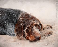Watercolor painting  *Watchful* by AtelierArends
