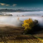 Awakening of a World by OlivierAccart