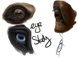 Eye Study by BangGoesReality