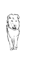 Lion Walk Front Animation by Domisea