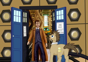 Whooves meets Ten, MLP and Doctor Who by StormCrow-42