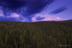 Under The Moon by Brettc