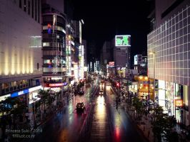 Shinjuku At Night by Princess-Suki-W
