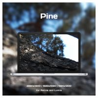Pine Wallpaper for Retina and Lumia by CryDagon